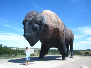 Big Jimbo, my Buffalo Savior