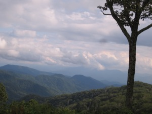 View from Newfound Gap Rd